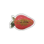Promotional Strawberry - Die Cut Magnets