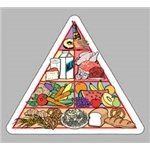 Promotional Food Pyramid - Die Cut Magnets
