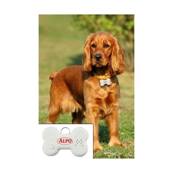 Promotional Talking Dog ID Tag