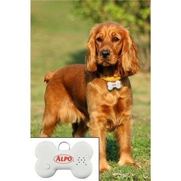Promotional Talking Dog ID Tag