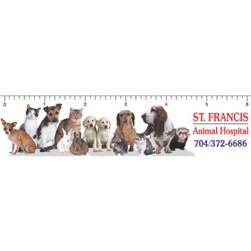 Promotional Dogs Cats - Ruler Magnets