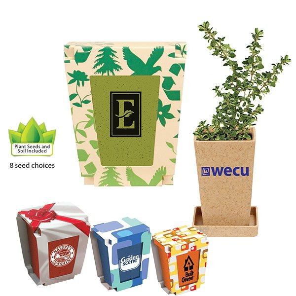 Promotional Promo Planter, 1- Pack Planter