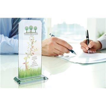 Promotional Jaffa Large Glass Starfire Echo Award
