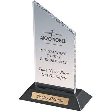 Promotional Acrylic 2 Award