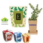 Promotional Promo Planter, 1-Pack Planter
