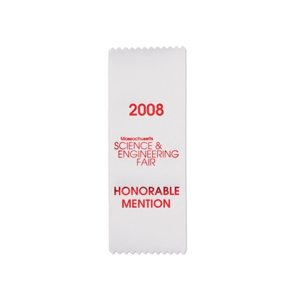Promotional Custom Ribbon - 3 X 8