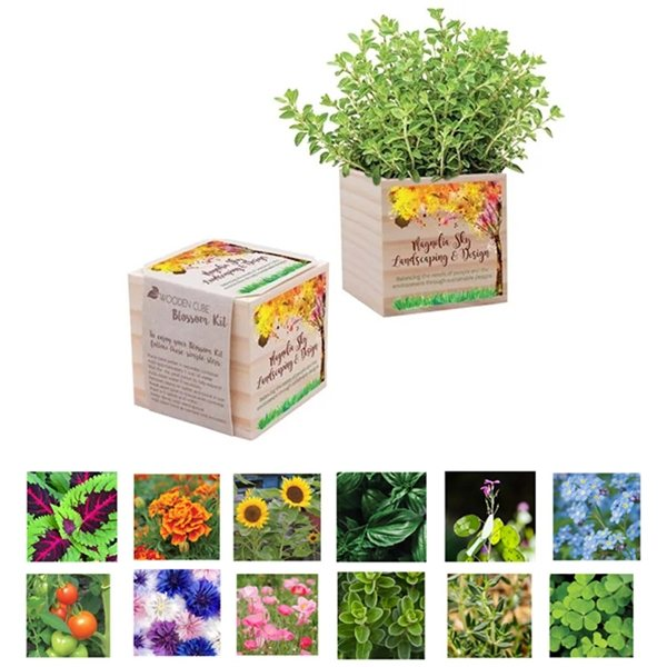 Promotional Wooden Cube Blossom Kit