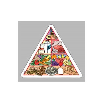 Food Pyramid - Die Cut Magnets