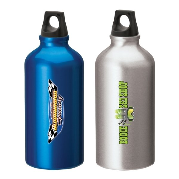 Promotional Sonia 16.9 oz. Flask with Twist Top