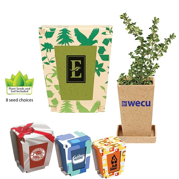 Promotional Promo Planter, 1- Pack Planter