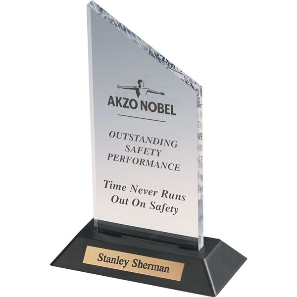 Promotional Acrylic 2 Award