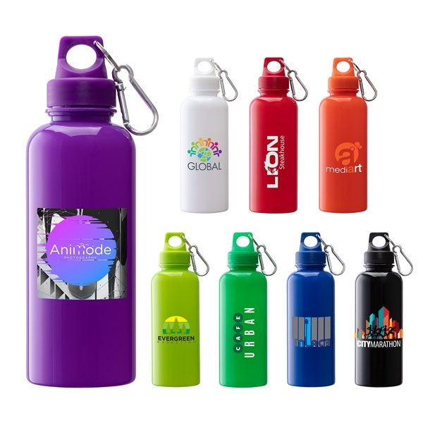 Promotional Brio 20 oz. PS Water Bottle w / Carabiner